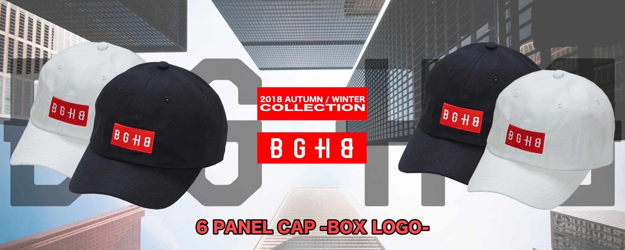 6 PANEL CAP -BOX LOGO-