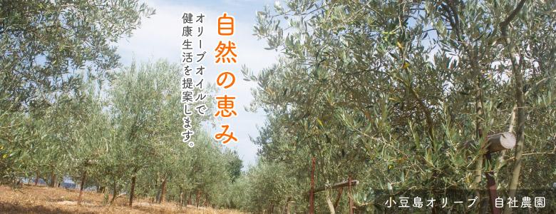 緑果実のエキストラバージンオリーブオイル
